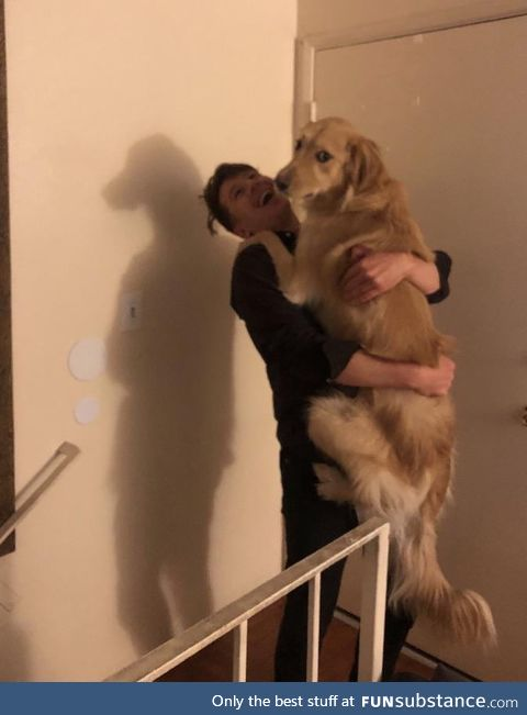 Terrifying dog man shadow
