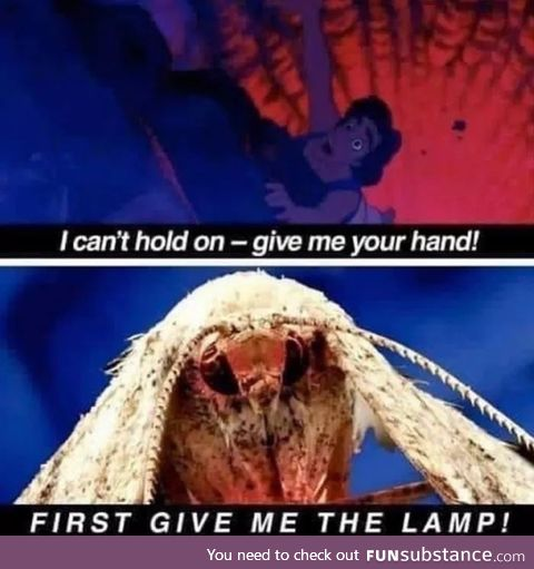 It gives us the lamp
