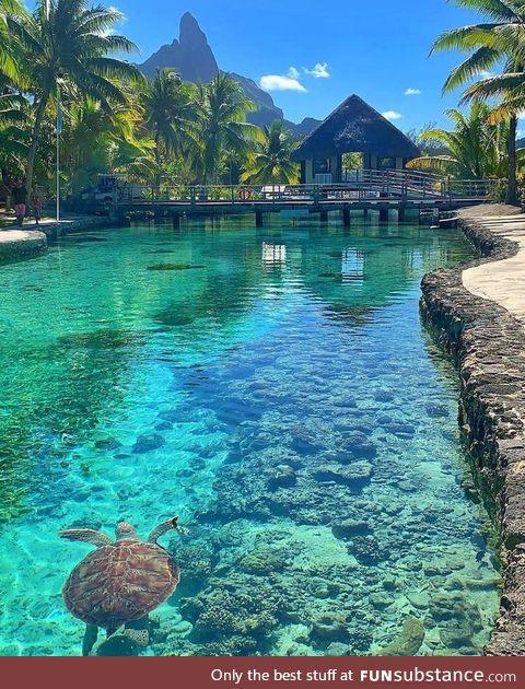 Simply Bora Bora