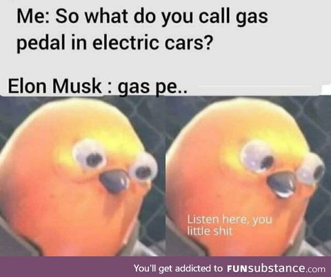 Don't mess with the Musk