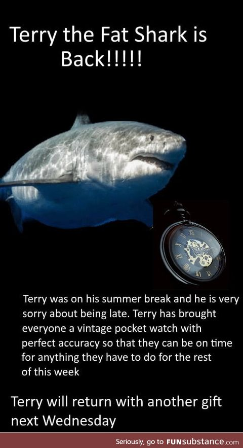Weekly terry