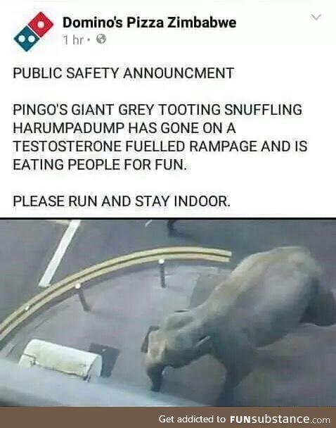 Zimbabwe seems fun