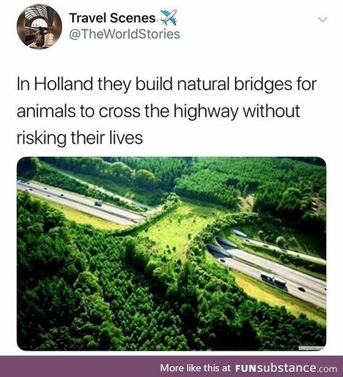 Holland Natural Animal Crossing Bridges