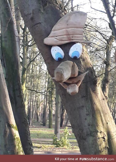 Tree? I am no tree!