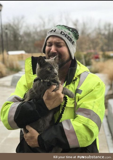 Cat lost in Ohio reunited in New York with owner thanks to microchip
