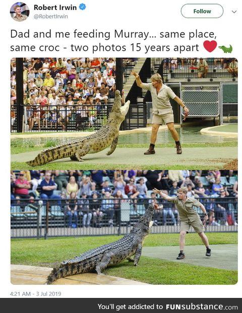 Robert and Steve Irwin feeding the same croc fifteen years apart