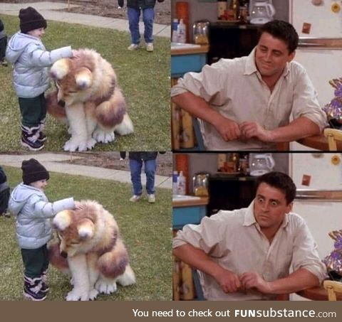 Look at the kid pet... The... Dog????