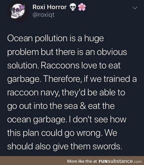 Raccoon garbage patrol