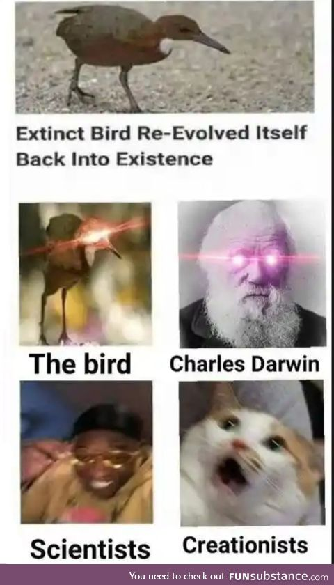 Evolution has found is way