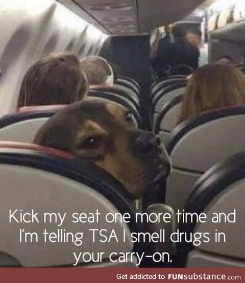 Doggo tell
