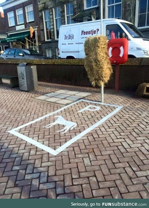 Parking spot for horses in the Netherlands