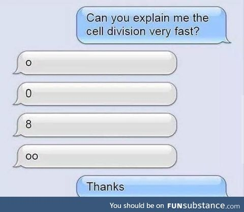 Cell division in a nutshell