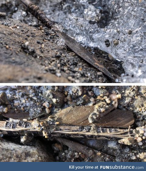 A circa 1,500 year old arrow recently found in melting ice