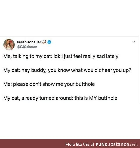 The problem with emotional support cats