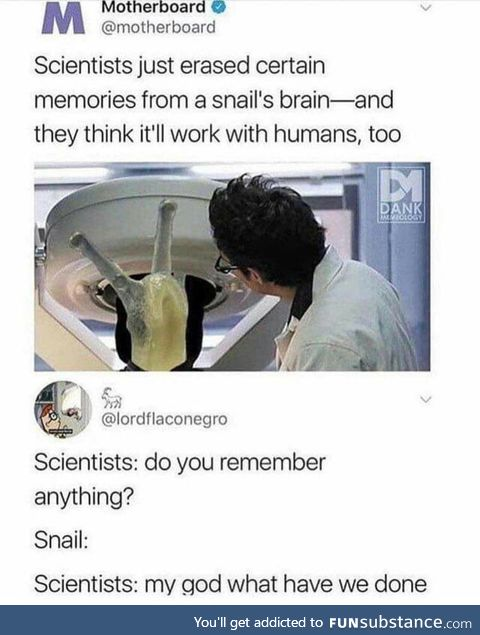 Snail's memory erased, Does this mean that we are free now?