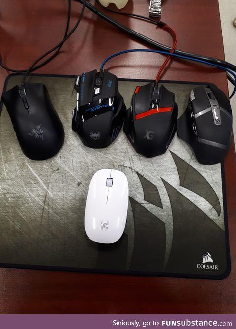 My mouse VS my classmate's mice