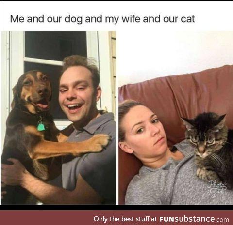 Dog type vs. Cat type