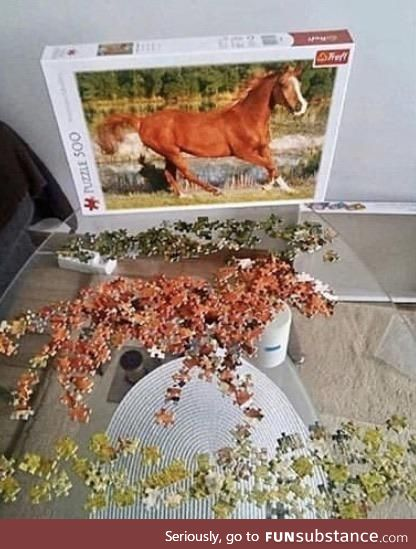 First time completing a puzzle... This shit is easy