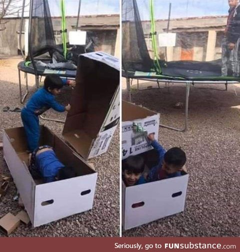 They were presented with a trampoline and they're playing with the damn box instead