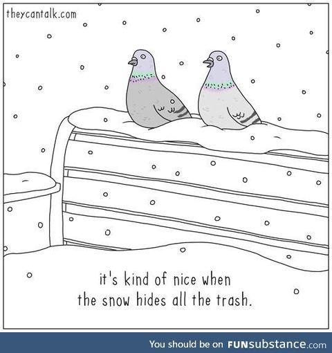 Winter wonderland is for the birds
