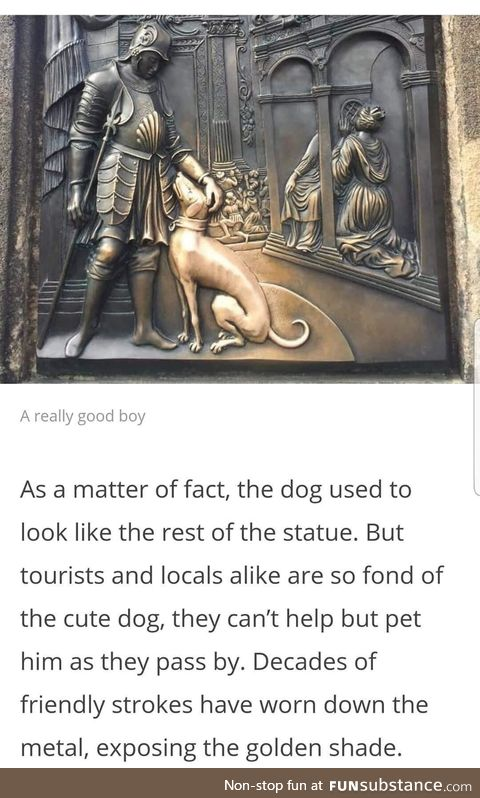 The good boy - a history