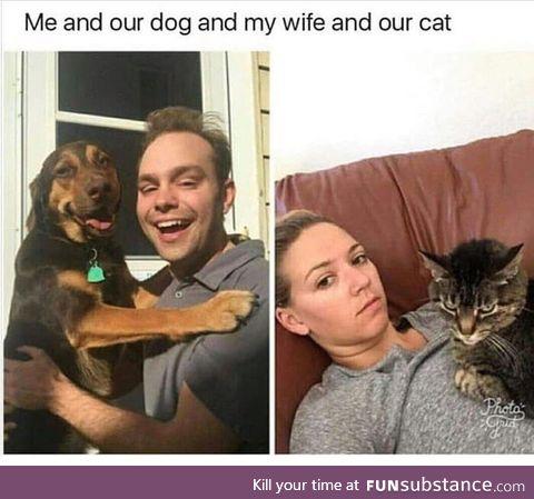 Cat/dog title