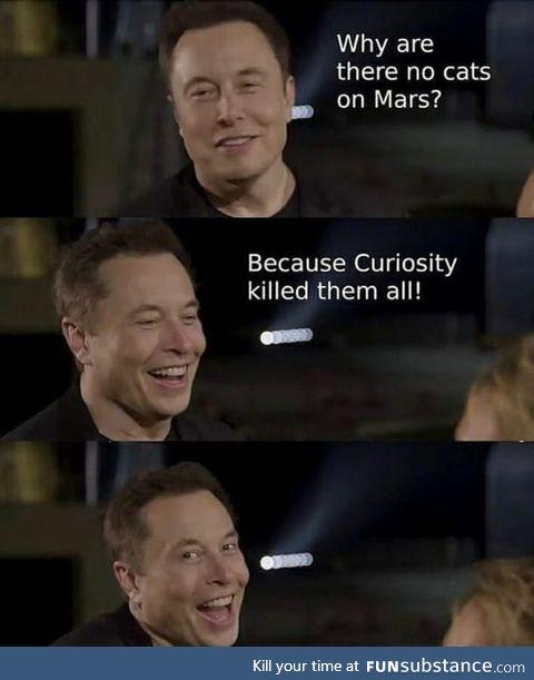 In Musk we thrust