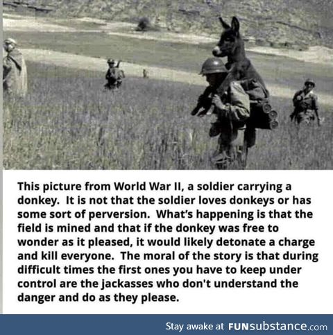 Carry a jackass you know on your back today!