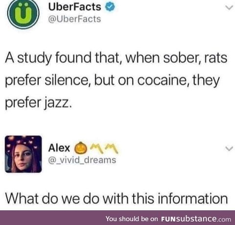 Asking the real questions