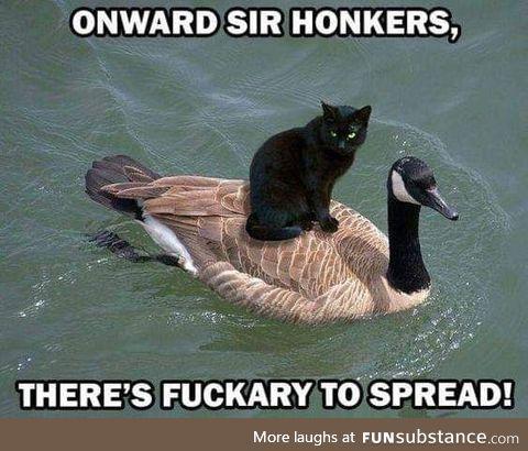 Onward ho!