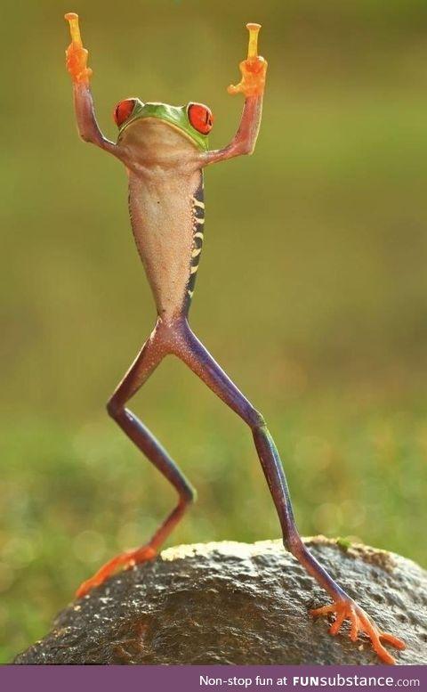 How you feeling Froggo ?