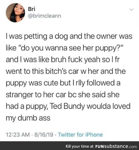 Dogs are the ultimate bait