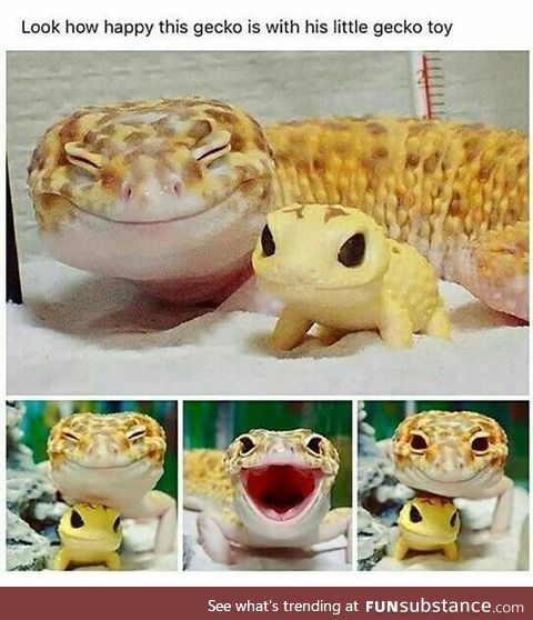 Let's Put A Smile On That Face [Leopard Gecko]
