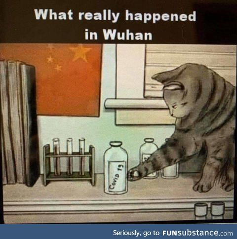 Wuhan, the rest of the story