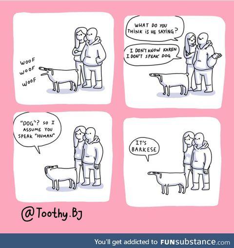 Dog-human relations