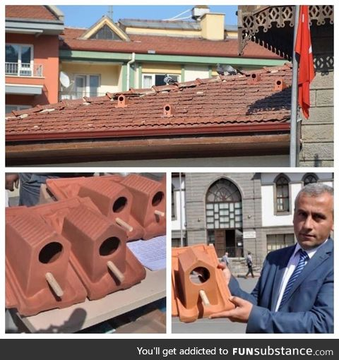 A factory in Turkey started making tiles that can offer shelter to birds and we all agree