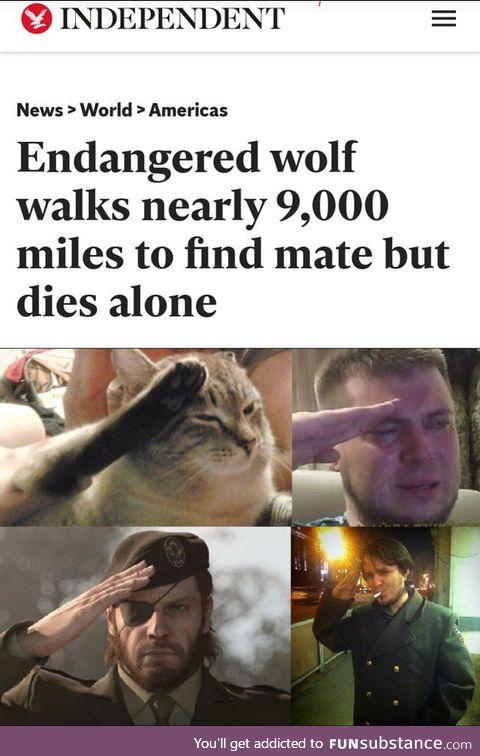 So long partner
