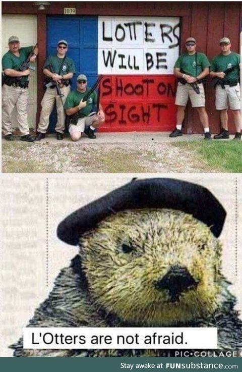 L'Otter has a perticular set of skills