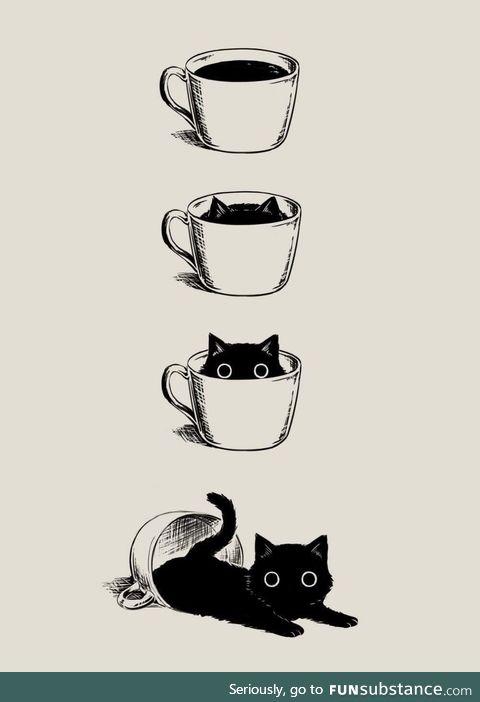 Kitty, black