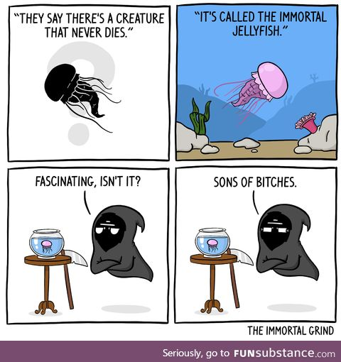 Death is jelly