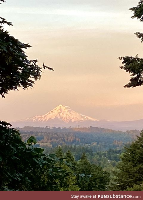 Mount Hood, right now, from our bedroom