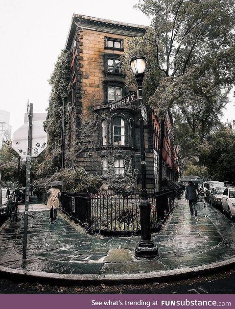 Autumn in New York City ig @mindz.Eye