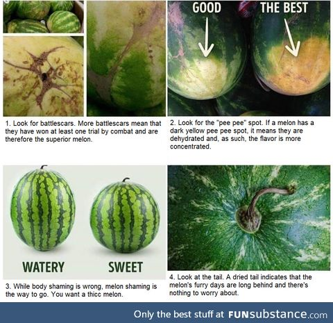 How to choose the absolute best watermelon
