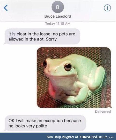 Froggo Fun #199 - Polite Boi