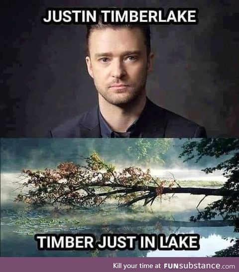 If a Timberlake falls in the forest and nobody is around to hear them, do they make a