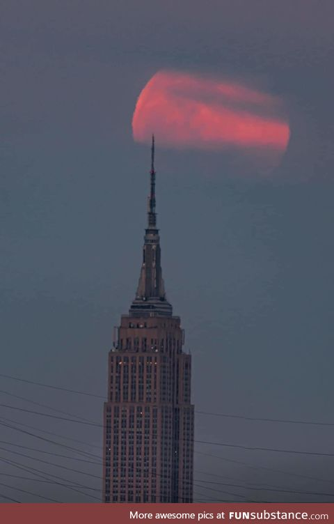 The pink Supermoon last nightover the Empire State Building during golden hour
