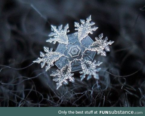 Microscopic view of a snowflake