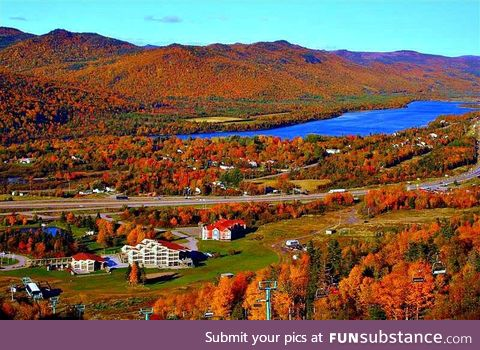 Newfoundland in fall