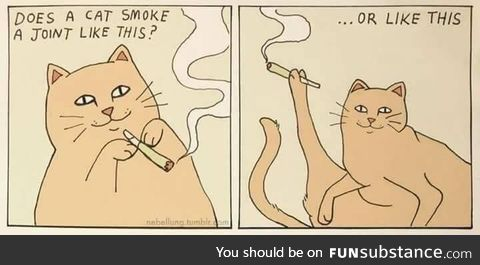 How cats smoke a joint