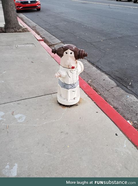 This is not the hydrant you expected today